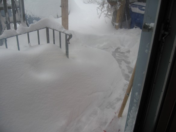 Snowstorm from our front door in 2010