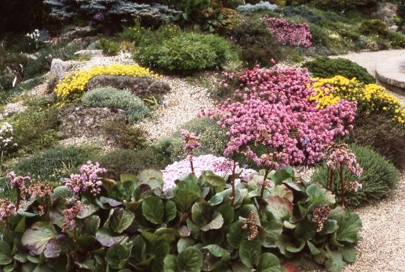 Botanic Garden - Oxford