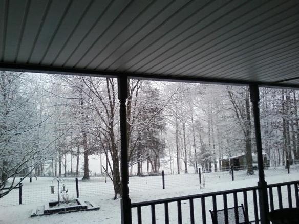 Connie's Farm. View from the porch last winter.