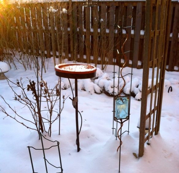 Cold, but the sun is out and the heated bird bath works!!