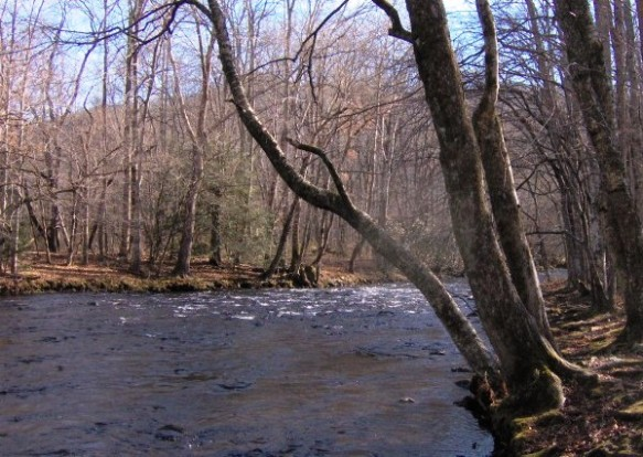 Oconolufte River, NC