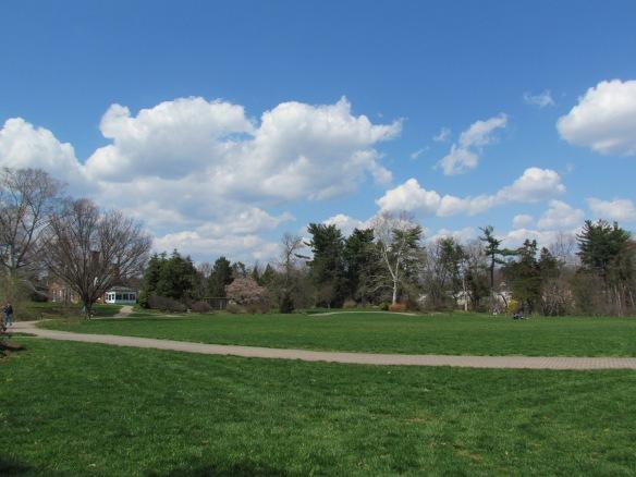 Greenspring Gardens, looking across the glebe.