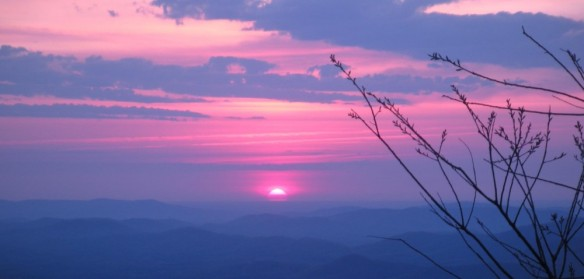 My granddaughter Joy took this photo on one of her hikes in the mountains. (I think)