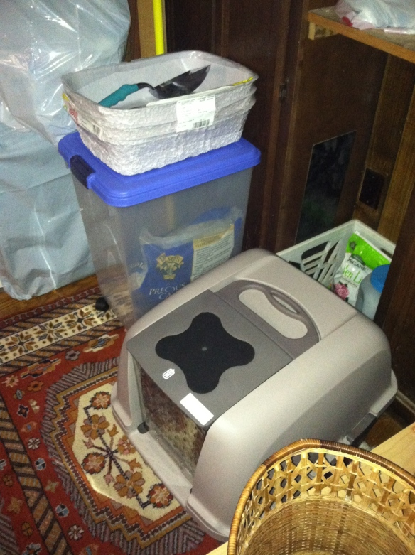 New cat boxes, container with cat biodegradable cat  litter and other paraphernalia.
