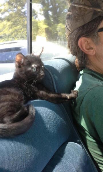 Kiki and Bill, love at first sight